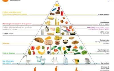 Partie 2 : Les fondements de la diététique et de la nutrition – Approfondir